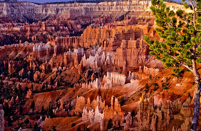 Sunrise at Brice amphitheater.  Looking south from Sunset point.  Bryce Canyon NP, Utah.