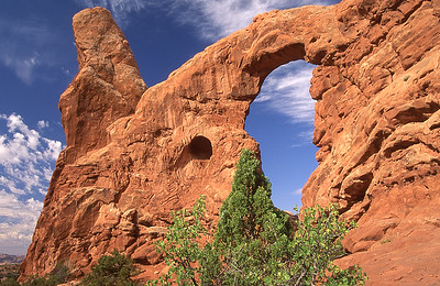 South window.  Windows section, Arches NP, Utah.