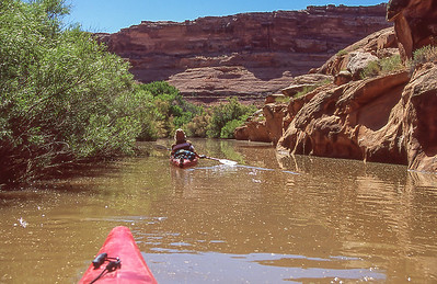 Several flooded side canyons required exploring.  This one extended about 1/2 mile.  Dan Brooks in lead kayak.  Cabin Bottom, Green River, Utah.