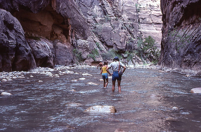 Walking in the north fork Virgin river and entering the narrows.  Zion NP. Utah.  1978