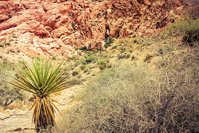 Inside Red Rock Canyon, the landscape is interesting. - September 2011