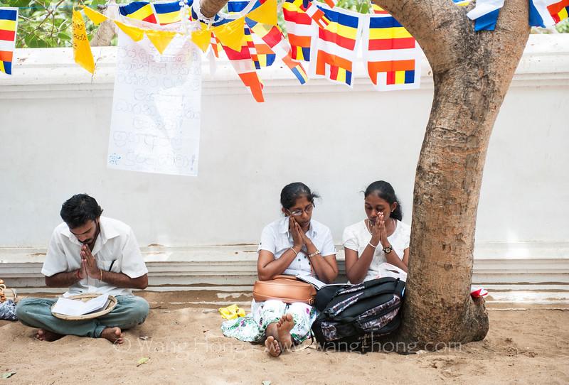 At Sri Maha Bodhi in Anuradhapura. (Bodhi Tree Temple)