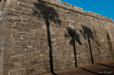 Shadows on the Fort