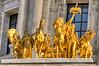 Gold Horses