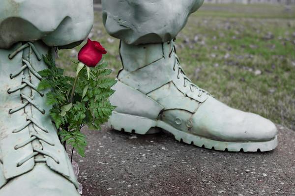 Veteran's Day, Memorial, Minnesota State Capitol, St. Paul, Saint Paul, Red Rose