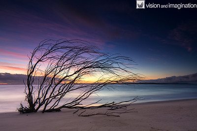 IMG_7391_Stradbroke Island - QLD