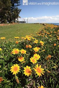 IMG_9111_Amity Point_Stradbroke Island QLD