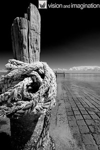 IMG_9078_Amity Point_Stradbroke Island QLD