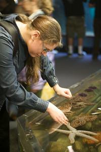 Susanne poking a sea urchin