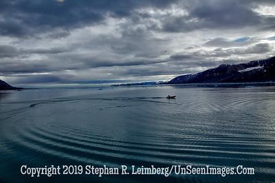 Woodfjorden - North Coast Spitsbergen 110814_1400