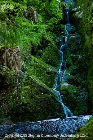 Garden of Eden Waterfall and Mushroom_110824_8951