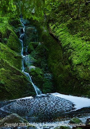 Garden of Eden II Waterfall and Mushroom_110824_8974