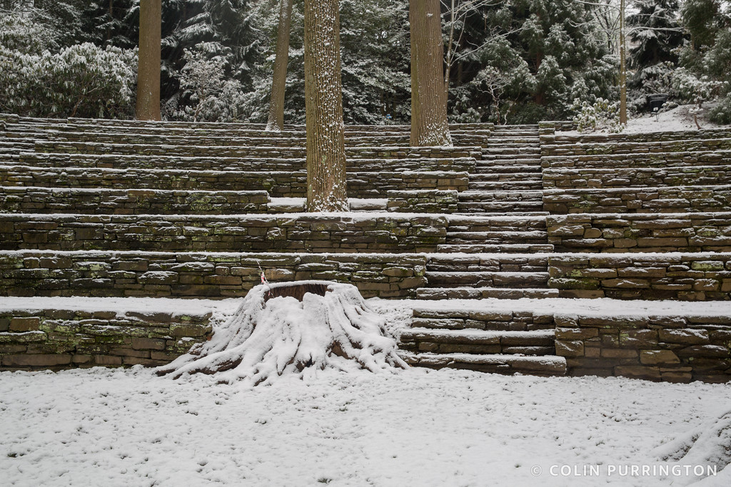 Amphitheater in winter