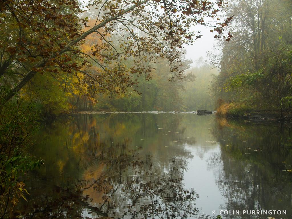 Crum Creek dam in fall
