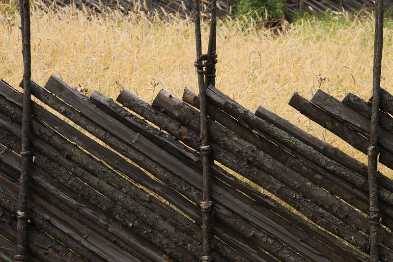 Older Fence