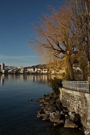 Switzerland, Montreux, Tree SNM