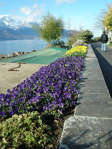 Montreux - by the lakeside