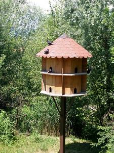 Papiliorama - Swiss tropical gardens