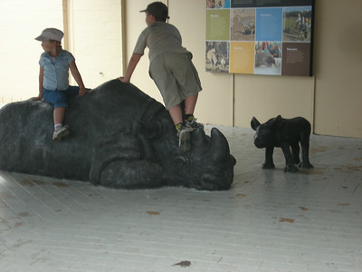 Children playing on a rhinoceros