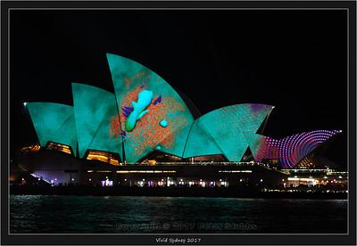 Vivid Sydney 2017
