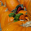 Didn't notice the little dinosaur on the pumpkins.