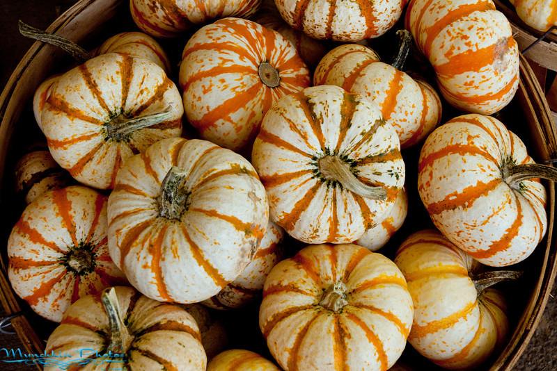 little gourds in a basket.