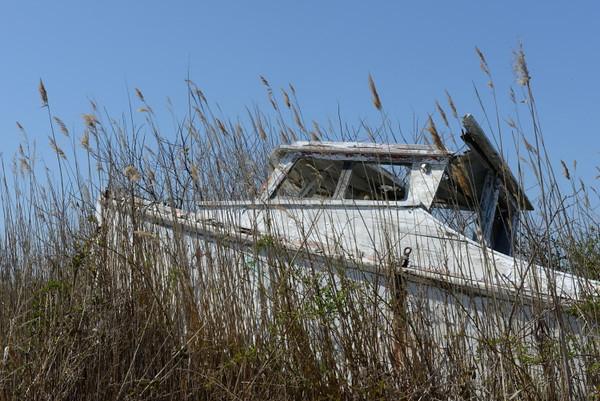 The boat graveyard.