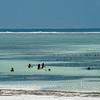Zanzibar - children having fun on Matemwe Beach 坦桑尼亚桑给巴尔岛