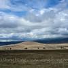 In Ngorongoro Crater, Tanzania 坦桑尼亚恩戈罗恩戈罗火山口