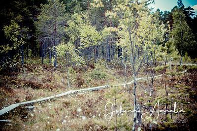 Teijon kansallispuisto MIska pyöräily 186
