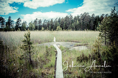 Teijon kansallispuisto MIska pyöräily 155