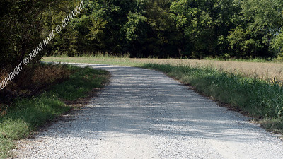 Gravel road through the Cross Creeks NWR, near Dover, TN