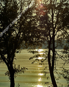 Sep 21, 2007 - The sun reflecting off Kentucky Lake through the trees. Looking west towards Paris Landing.