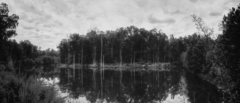 Reflective Pond_Pano - Version 2
