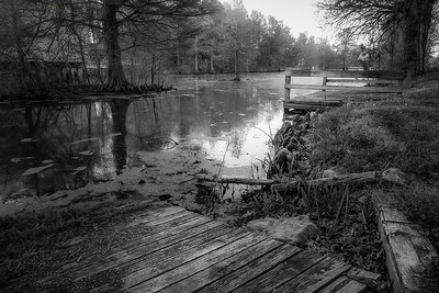 20140425Reelfoot051-Edit-Edit