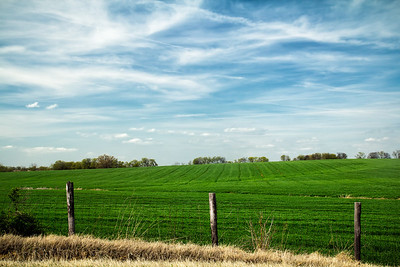 20140412Wheat028-Edit