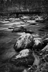 Greenbrier Black and White
