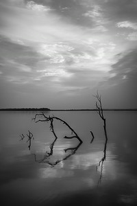 20140829Reelfoot023-Edit