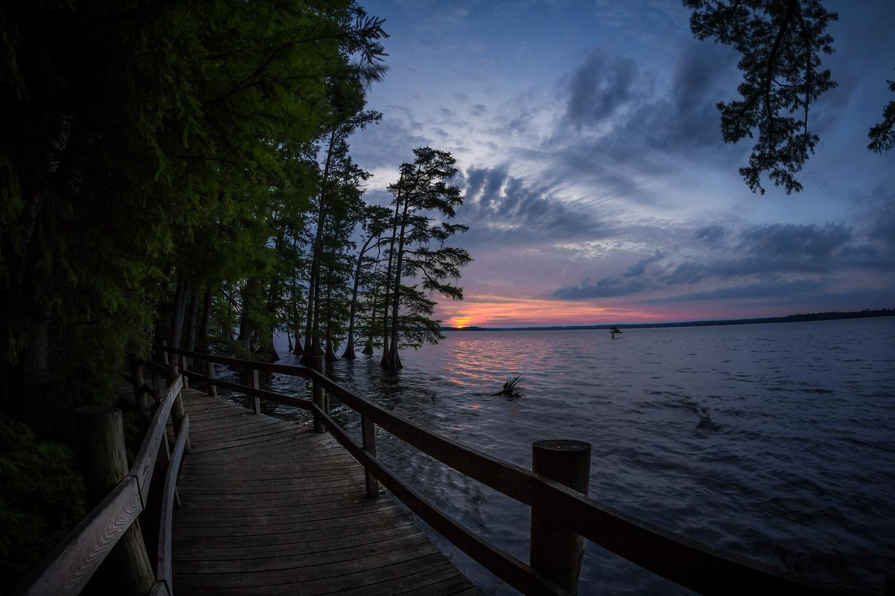 20150523Reelfoot Lake028