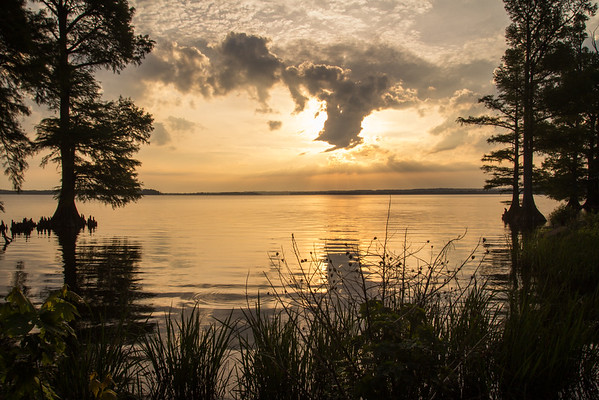 20150523Reelfoot Lake059