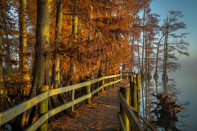 20141108Reelfoot033_4_5_tonemapped