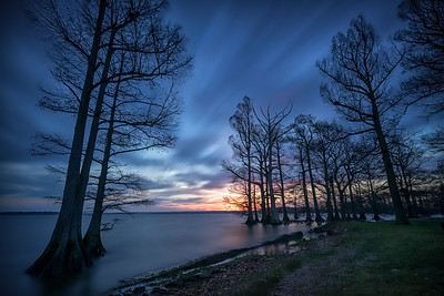 20170402Reelfoot031-Edit