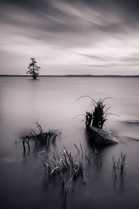 20170402Reelfoot038-Edit-2