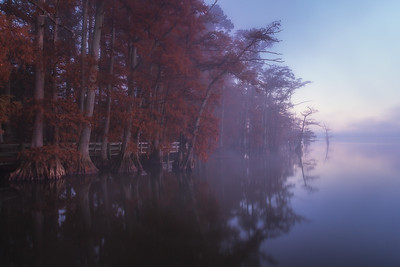 20141108Reelfoot016-Edit