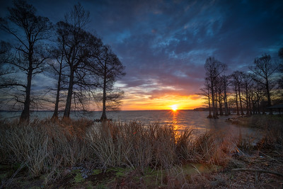 20170402Reelfoot035-Edit