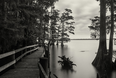 20140516Reelfoot002-Edit
