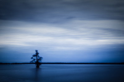 20140124Reelfoot020-Edit-Edit