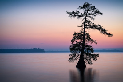 20160424Reelfoot007-Edit