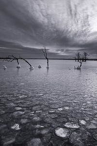 20140124Reelfoot008-Edit