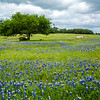 2017_4_15-16 Texas Hill Country-381-2